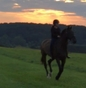 EXCLUSIVE CANDID: Mackenzie Rosman riding with Odysseus into the Summer sunset on 25th August 2017