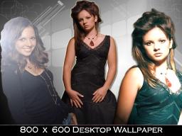 800x600 Desktop Wallpaper 6